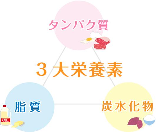 三大栄養素イラスト