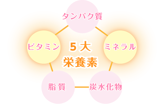 5大栄養素イラスト