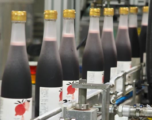 ザクロのしずくをビンに入れる工場