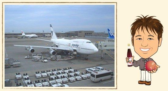 日本の空港