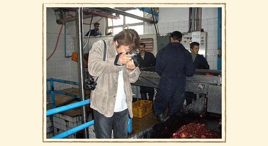 ざくろ工場内を写真を撮るザクロ伝道師
