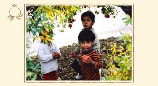かわいいイランの子どもたちがザクロを食べる日常